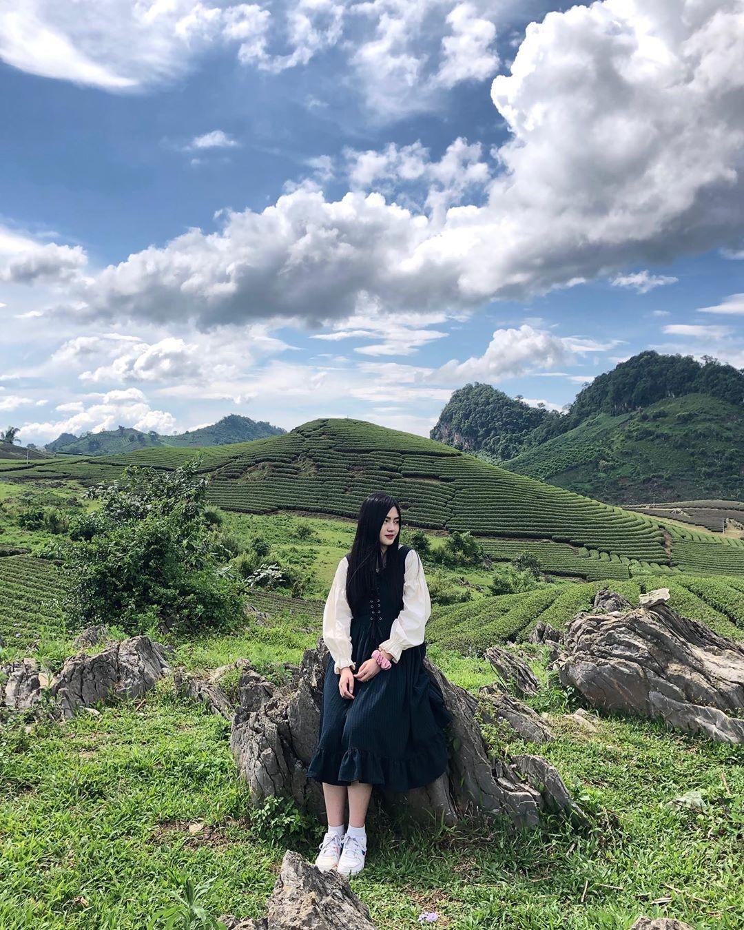Vietnam natural landscape_tea plantation