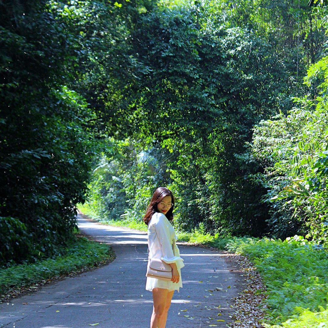 Vietnam natural landscape_Cuc Phuong national park