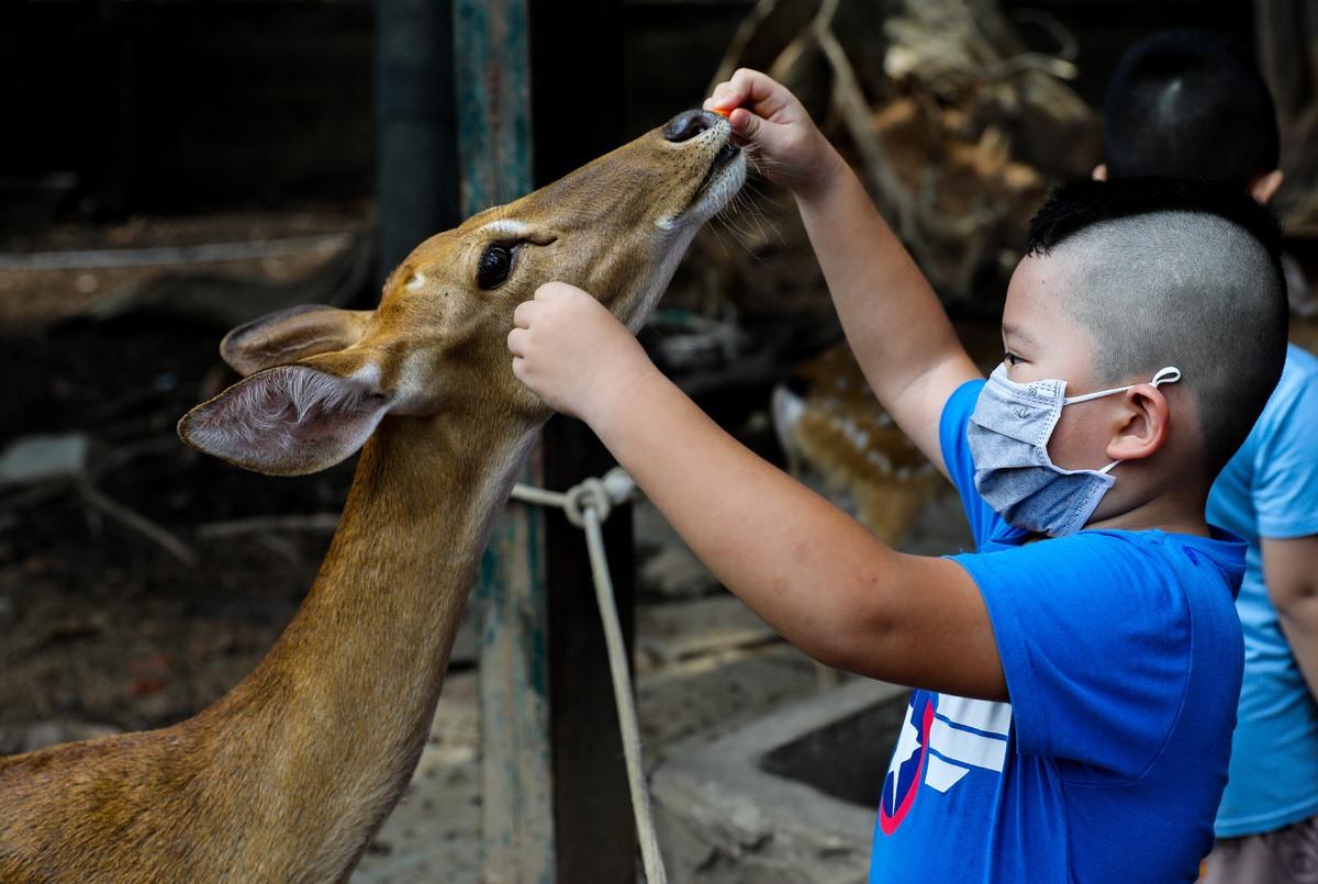 Saigon Zoo_visitors
