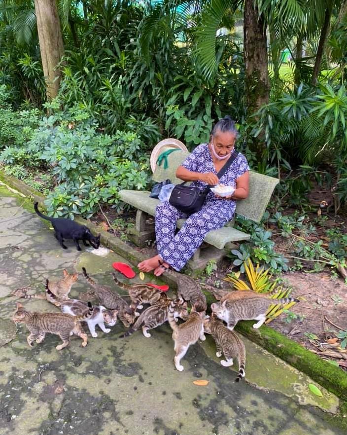 Saigon zoo_lottery ticket seller