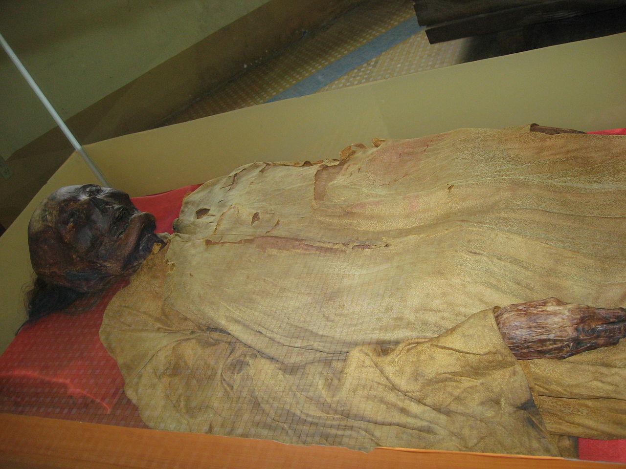 Saigon Zoo guide - the mummy Lady