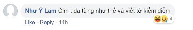 nhu y lam's facebook comment