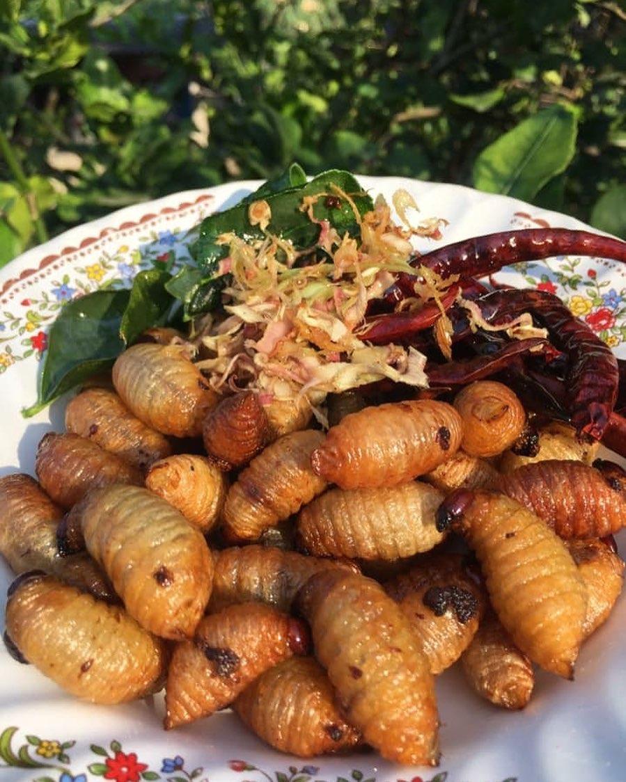 weird vietnamese foods - fried đuông dừa