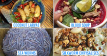 10 Weird Vietnamese Foods To Challenge Your Inner Daredevil – From Living Larvae To Raw Blood