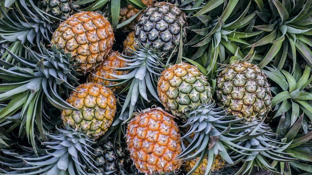 hotpot recipe-pineapple