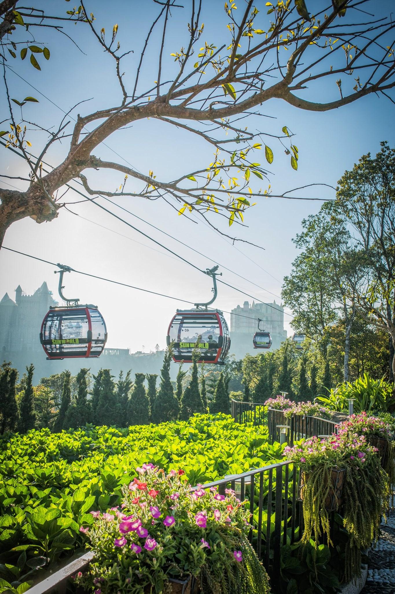 sun group cable car ba na hills