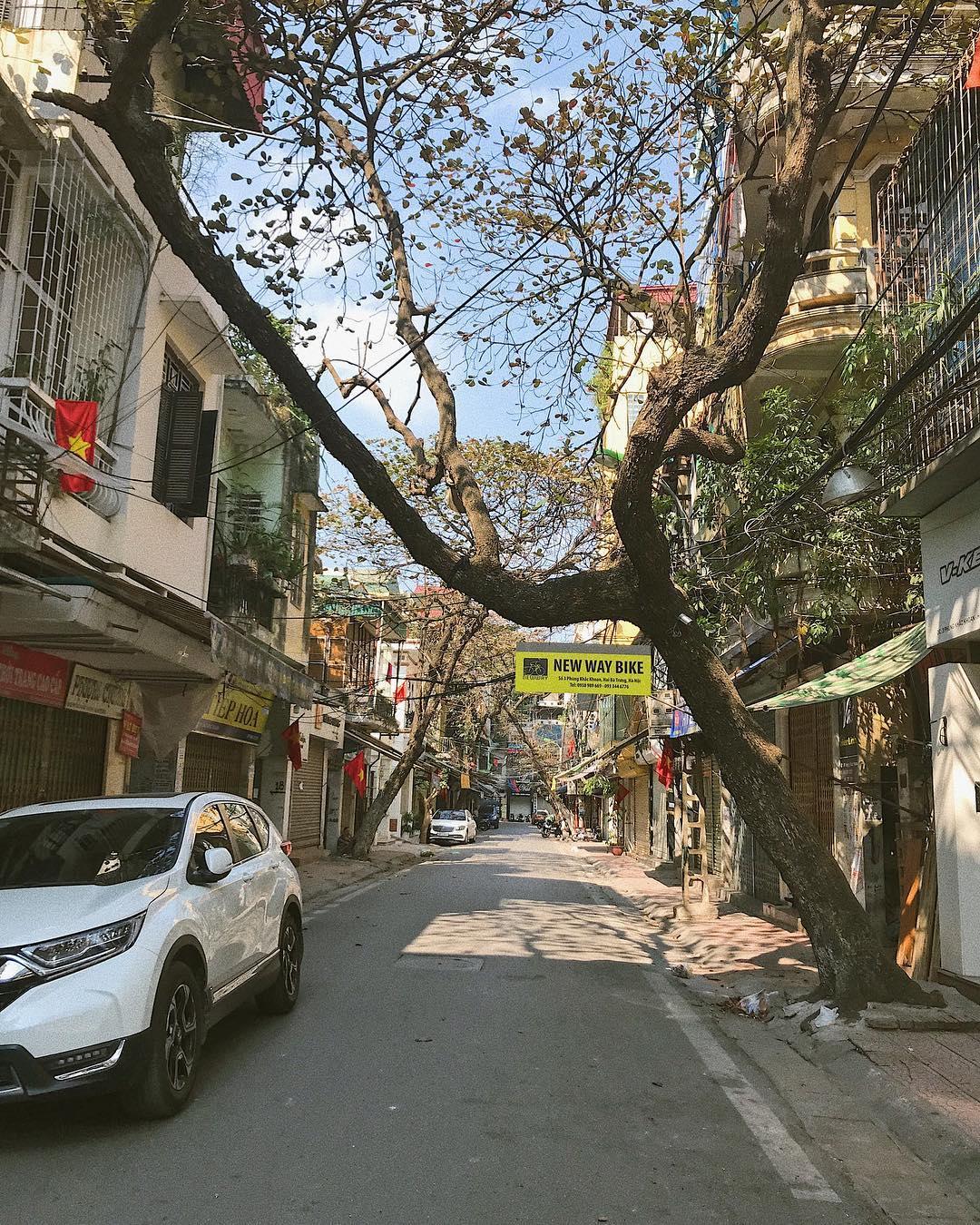 Hanoi streets during Tet