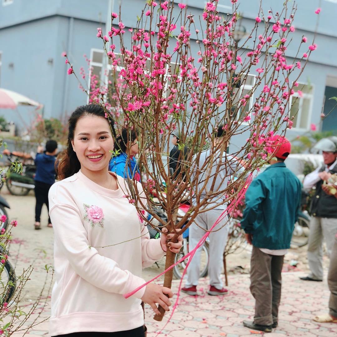 cherry blossom hoa dao