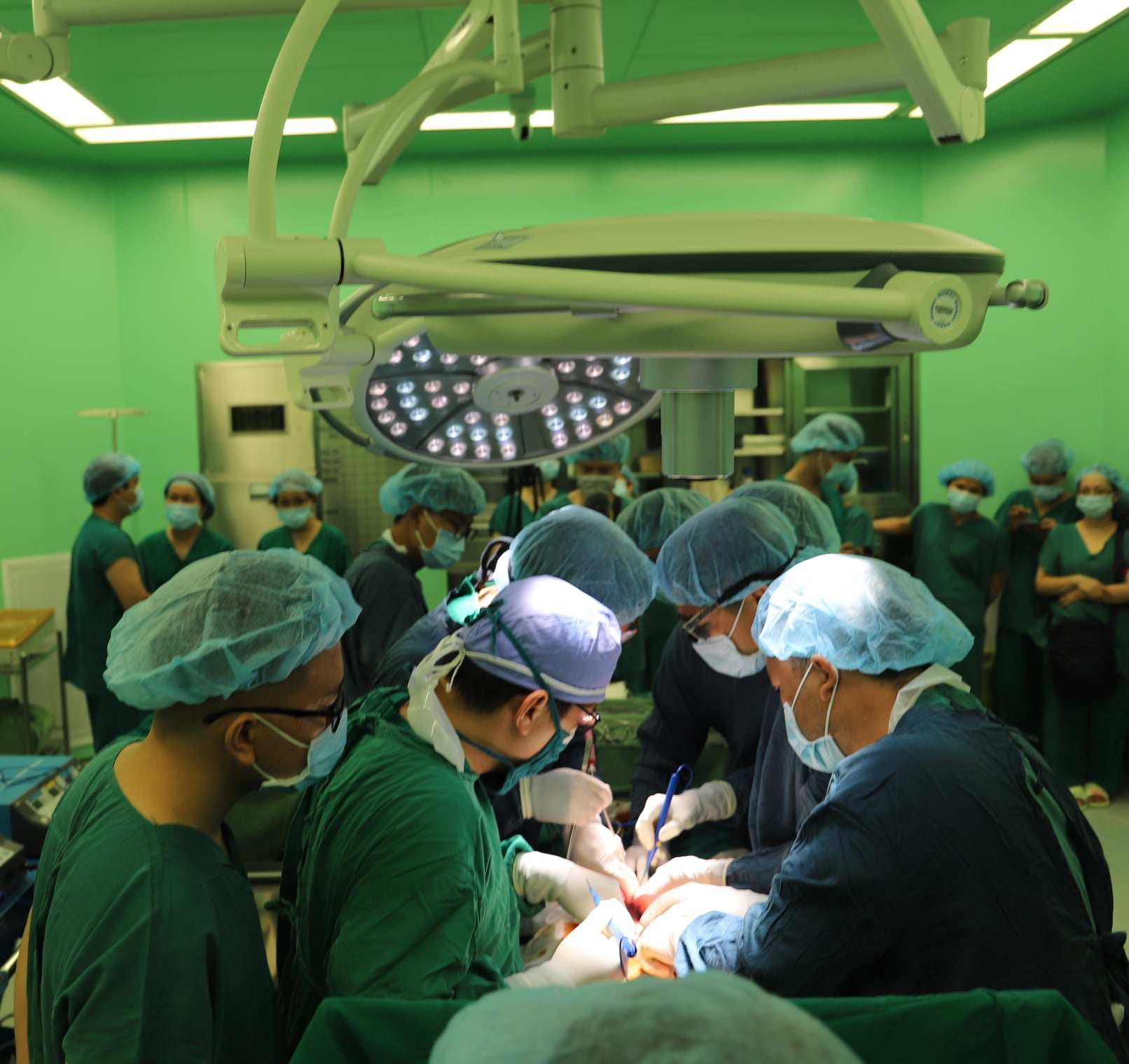 doctors taking organ from donor