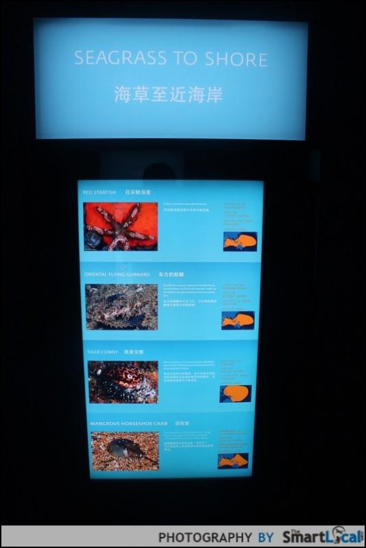b2ap3_thumbnail_IMG_7469.JPG