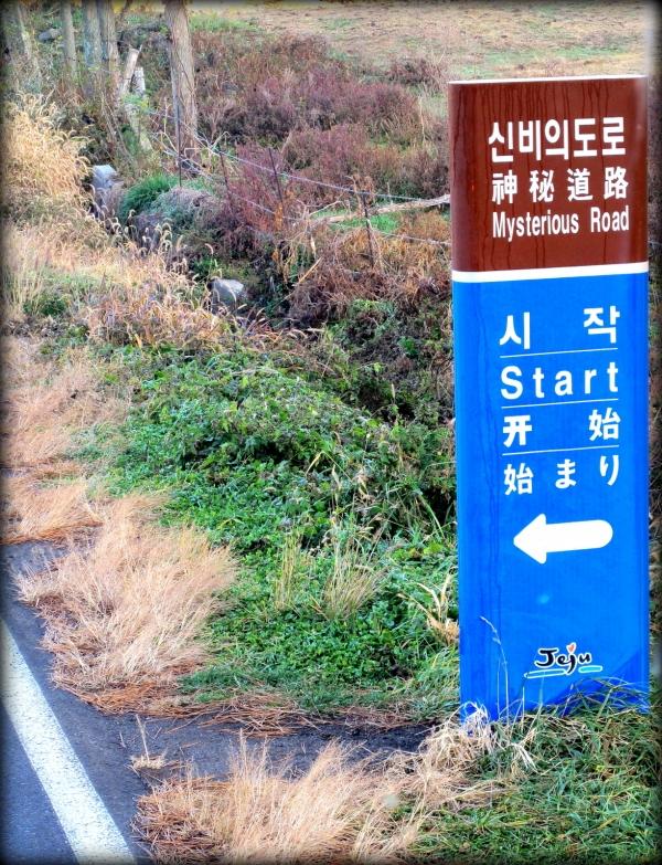 b2ap3_thumbnail_IMG_0552.JPG