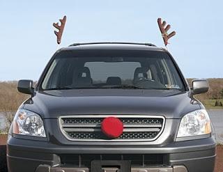 b2ap3_thumbnail_Reindeer-Antlers.jpg