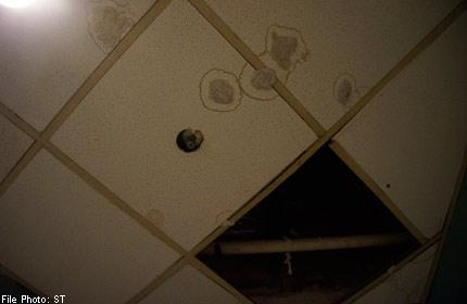b2ap3_thumbnail_singapore_toilet_day_bad_habits.jpg