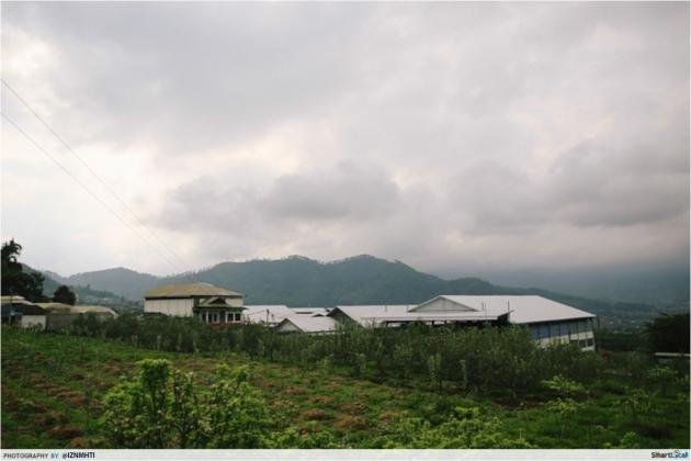 Kusuma Agro Wisata Fruit Picking Orchard