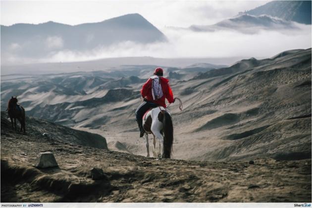 Gunung Bromo Horse