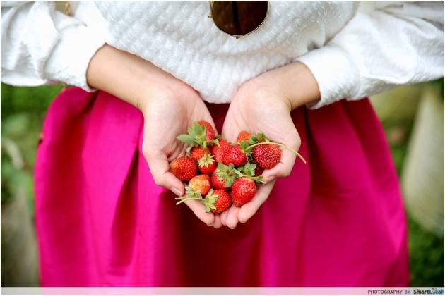 b2ap3_thumbnail_bandung-strawberries.JPG
