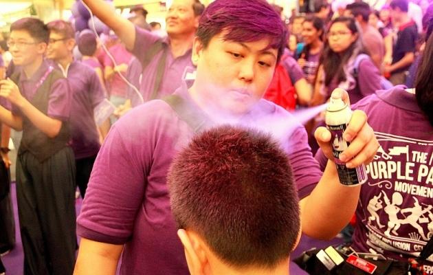 b2ap3_thumbnail_purple-parade05.JPG