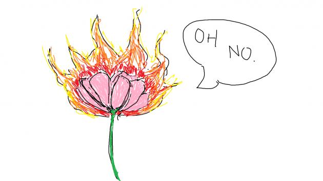b2ap3_thumbnail_fire-flower.png
