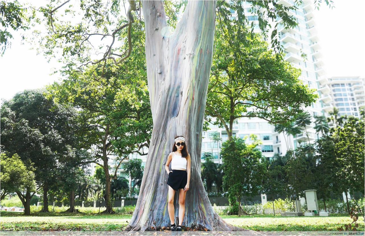 7-Katong-Tree-3-copy.jpg
