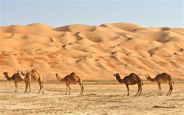 2.-Saudi-Arabia.jpg