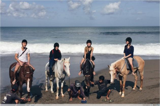 b2ap3_thumbnail_bali-horses.jpg