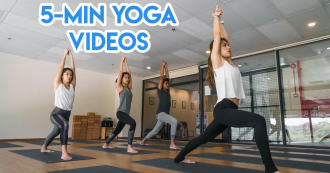 home yoga fitlion