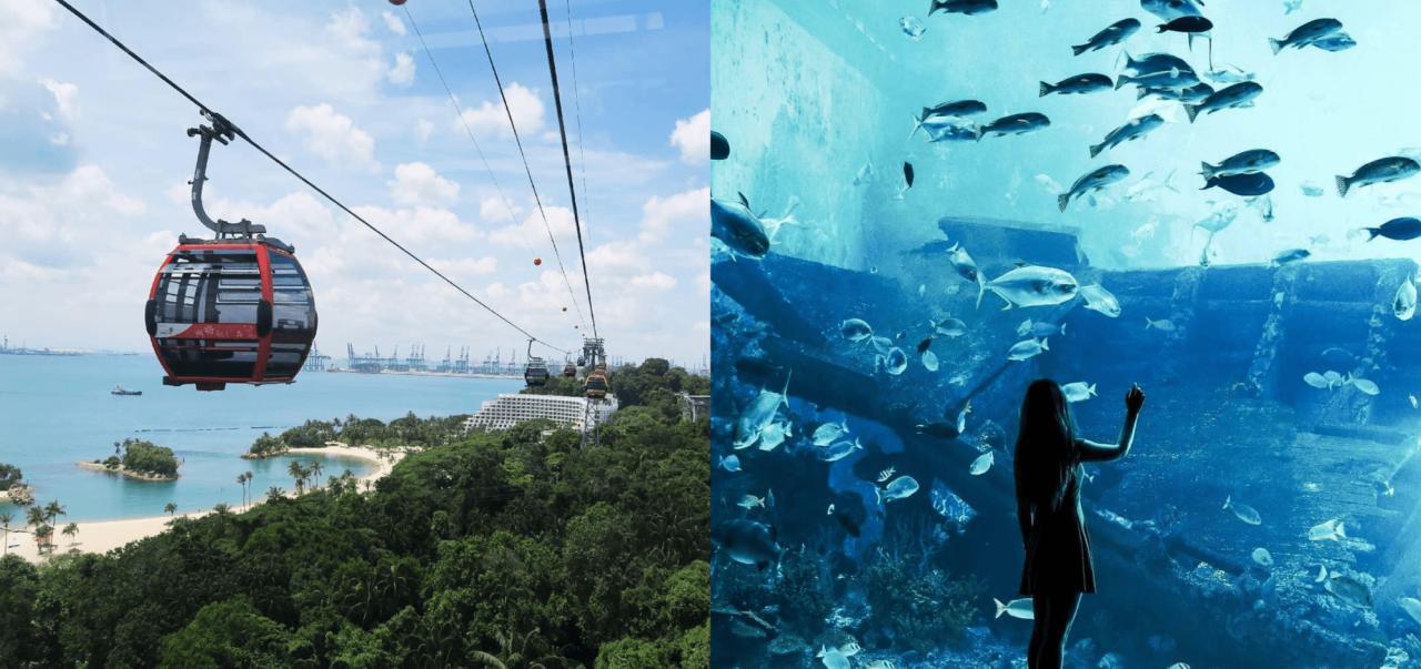 sea aquarium cable car