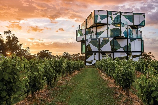 Jetabout Holidiays - McLaren Vale vineyards