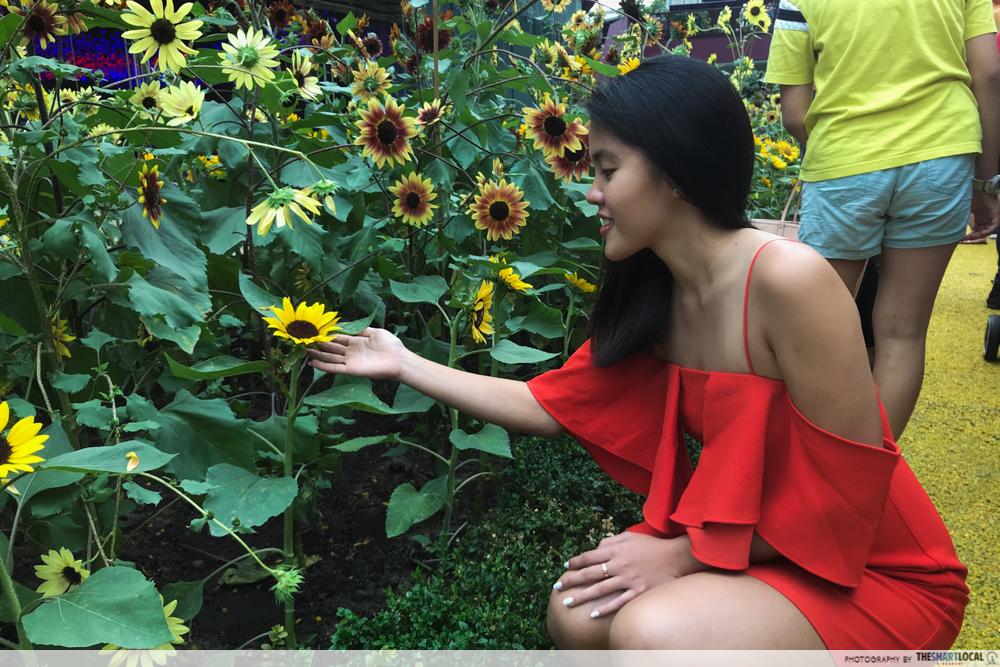 Sunflower surprise ootd using phone GBTB - bad lighting