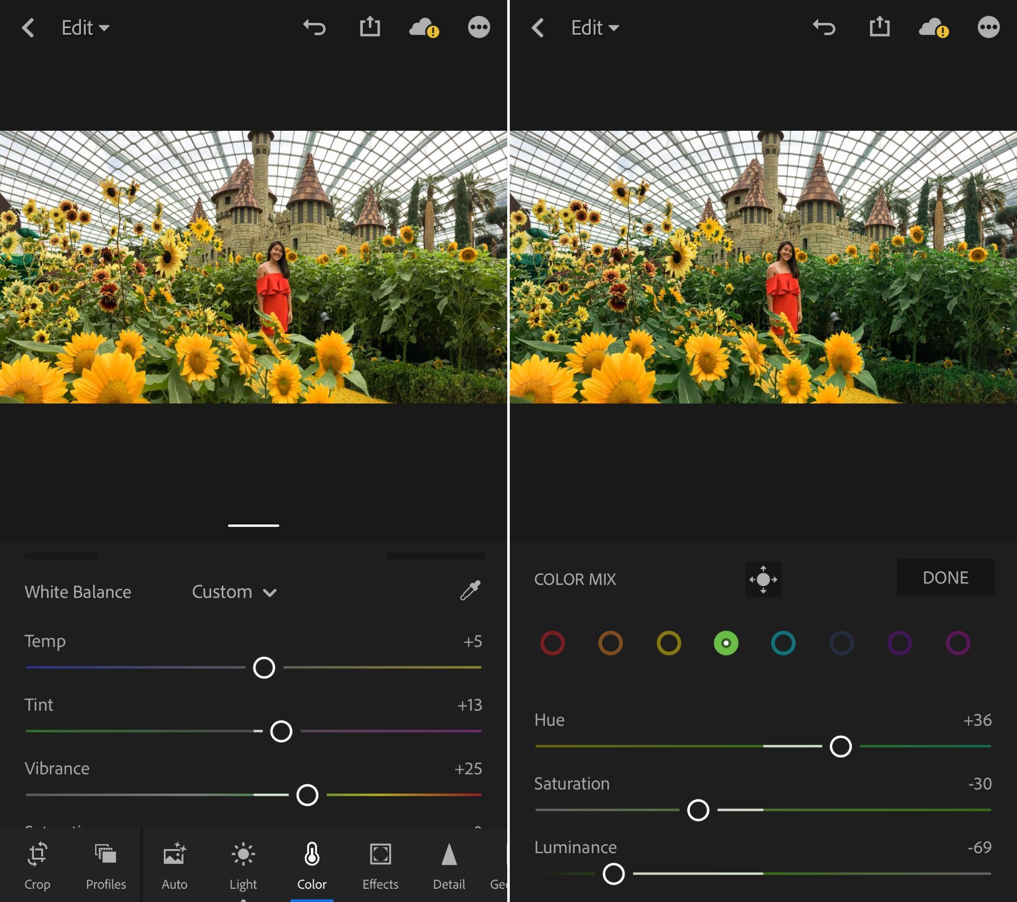 Sunflower surprise ootd using phone GBTB - lightroom colour mix tab