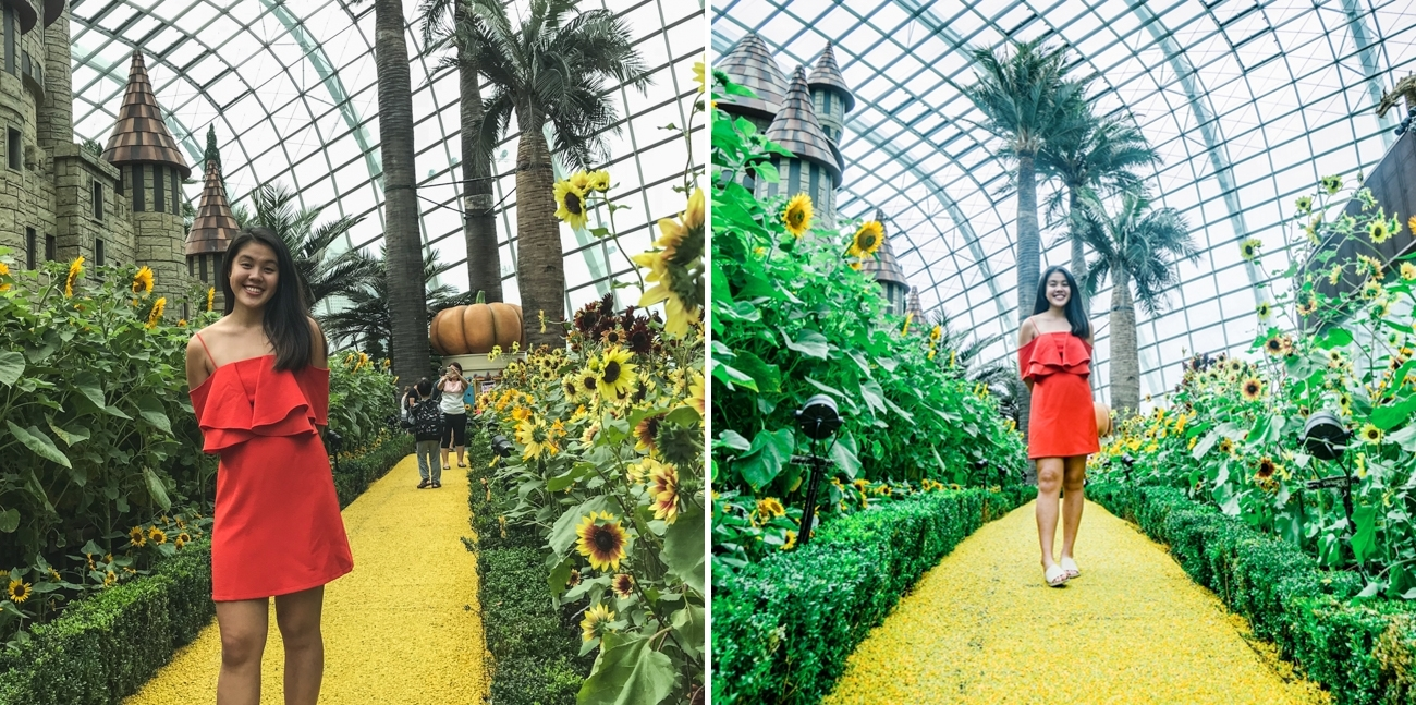 Sunflower surprise ootd using phone GBTB - yellow brick road rules of third leading lines crop