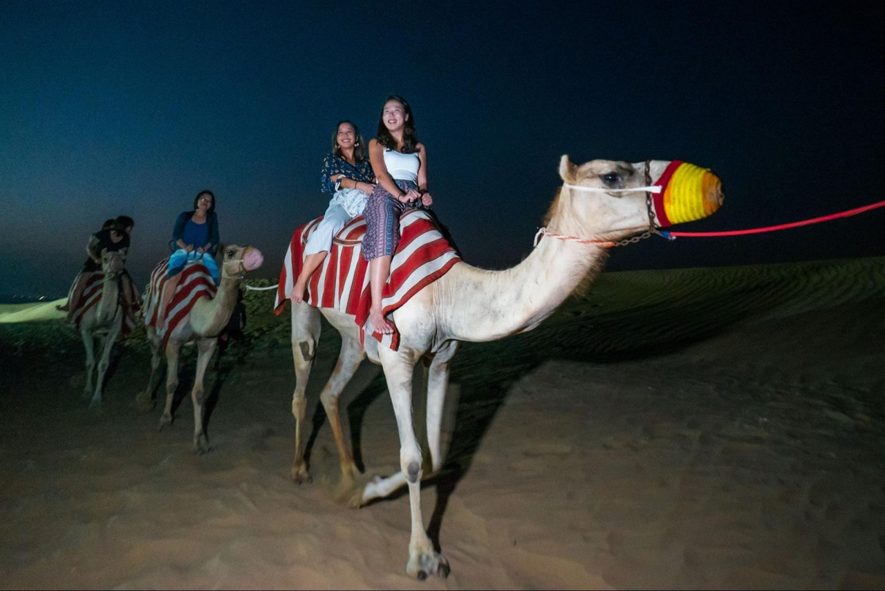Things to do in Dubai - camel riding
