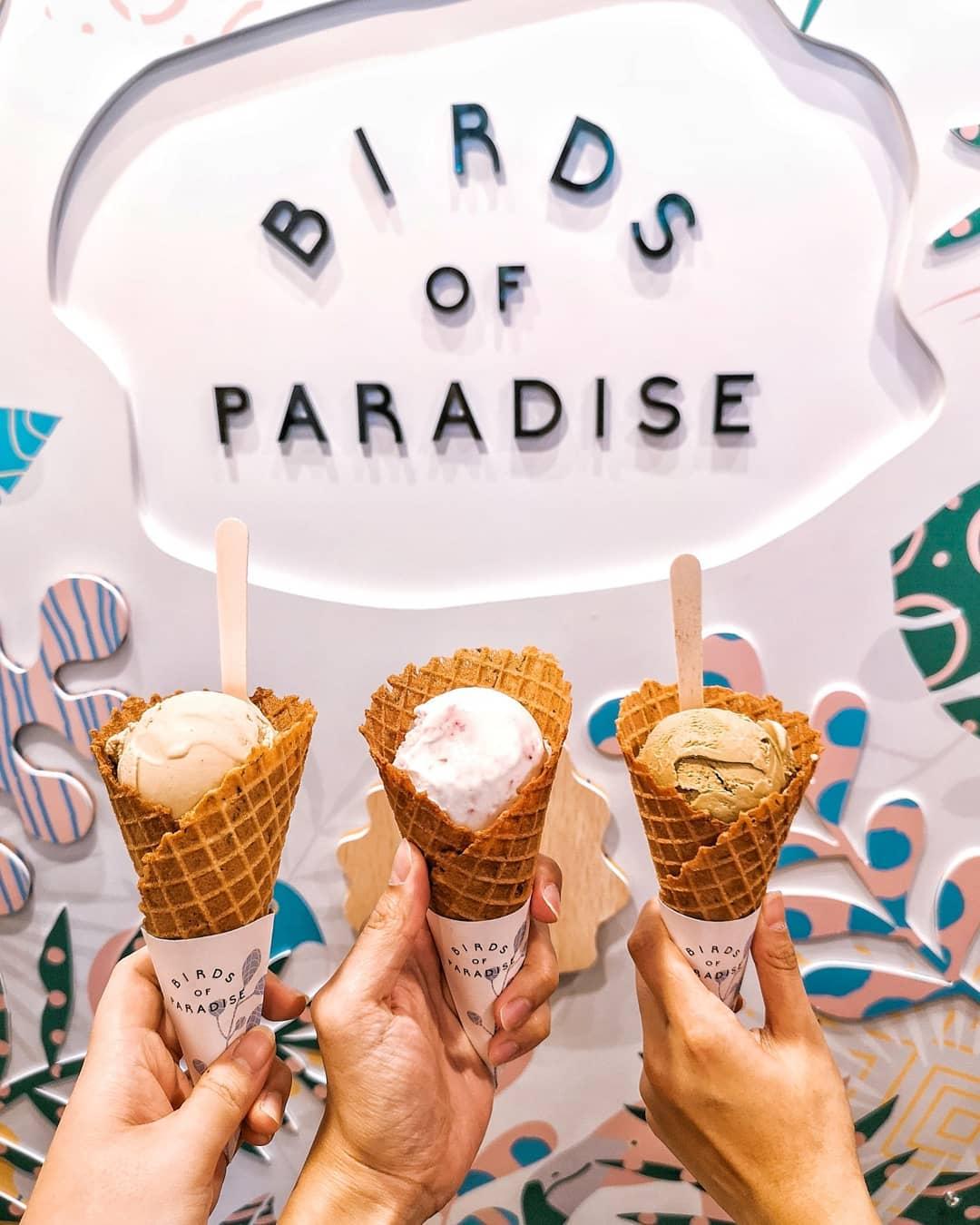 birds of paradise ice cream