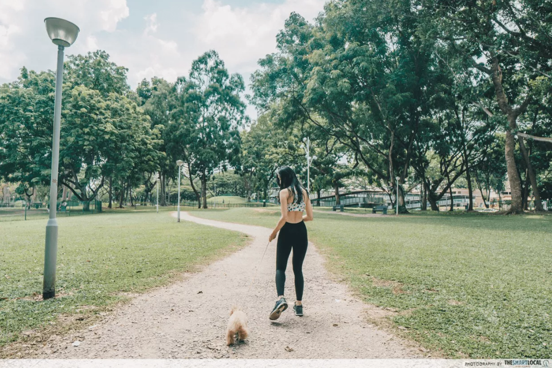 Dog runs Singapore - bishan park ang mo kio central