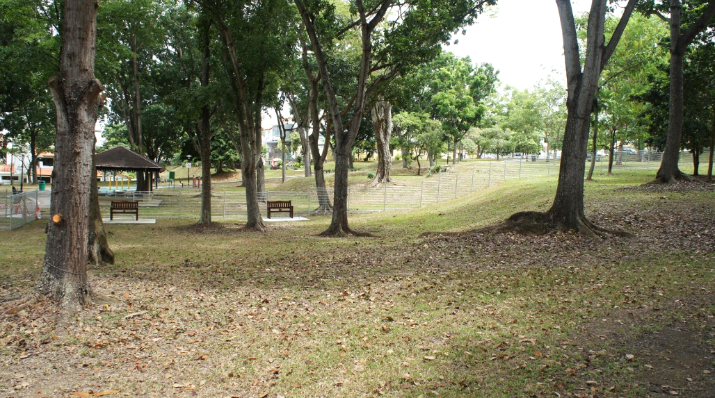 Dog runs Singapore - interim park kembangan dog run