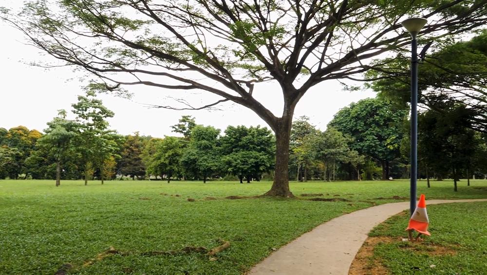 Dog runs Singapore - west coast park