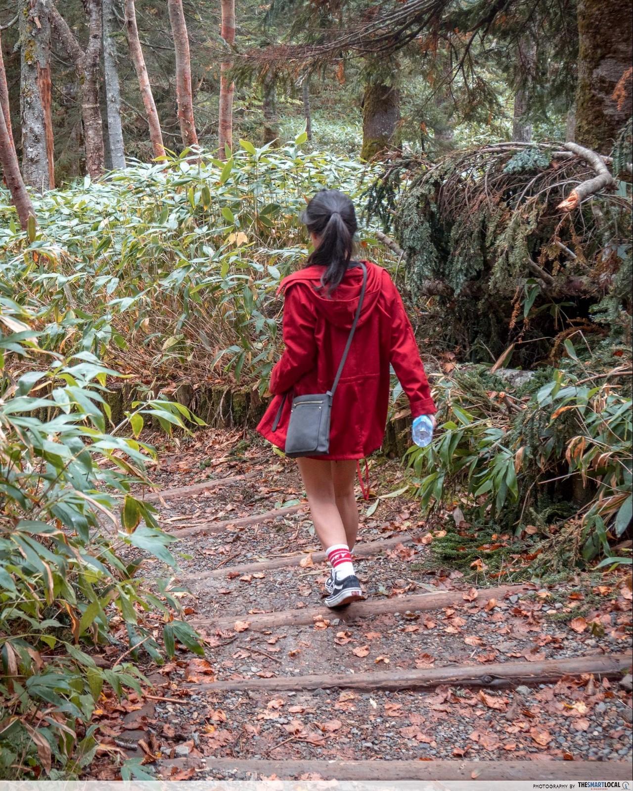shin-hotaka forest path