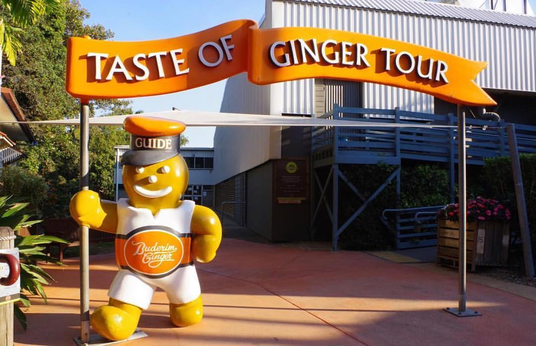Queensland trips jetabout holidays - buderim ginger factory