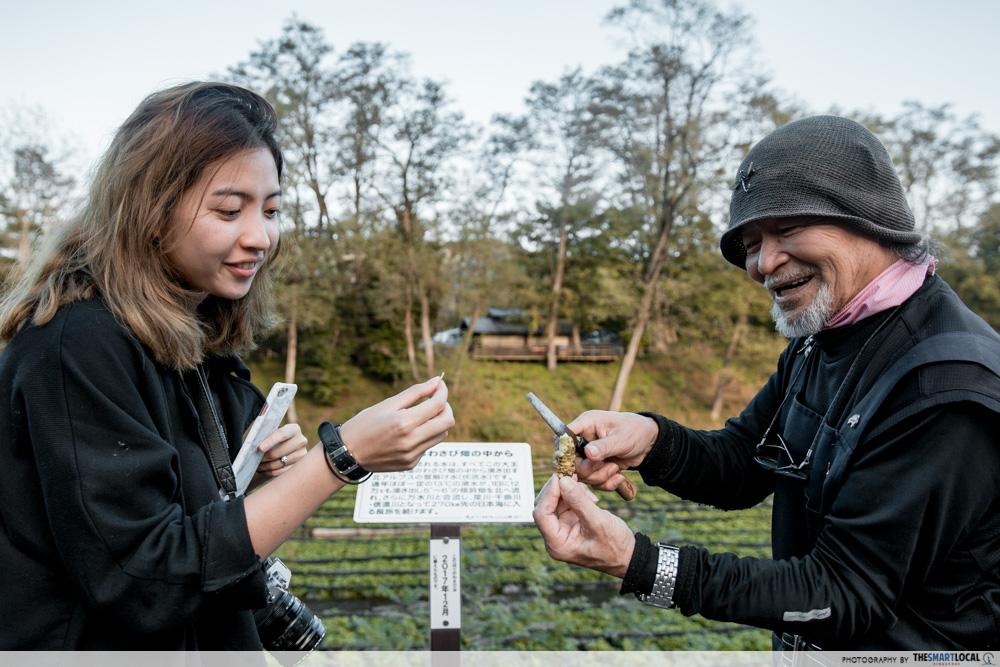 Nagano kamokochi matsumoto guide - daio wasabi farm wasabi ninja master