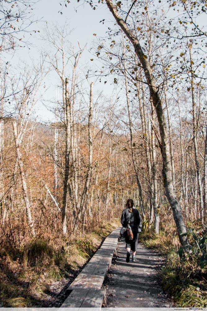 Nagano kamokochi matsumoto guide - hiking trail