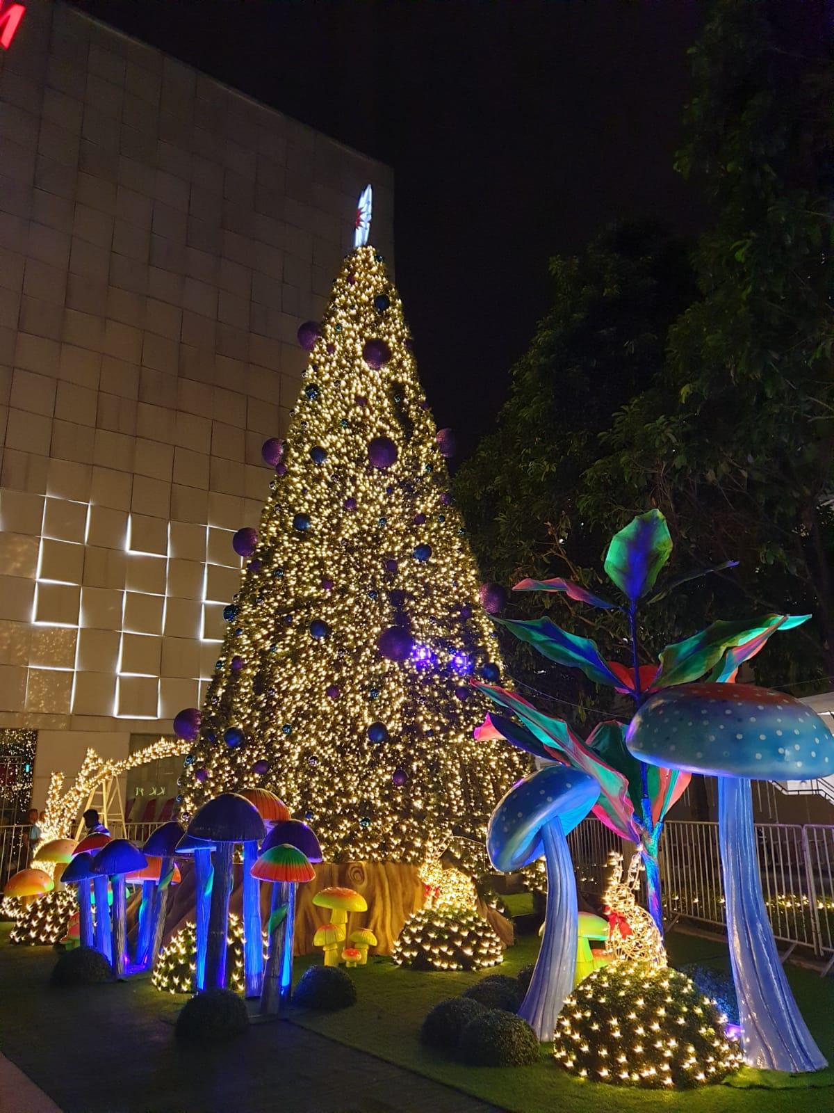JEM wonderland themed christmas 2018 - night christmas tree twinkle lights