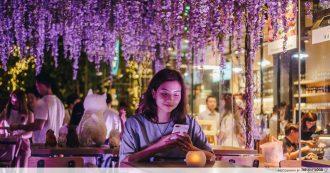 Japan Rail Cafe - wisteria