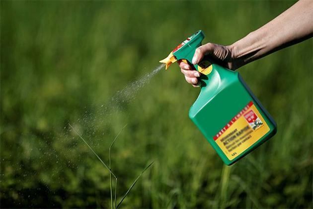 pesticides and nicotine