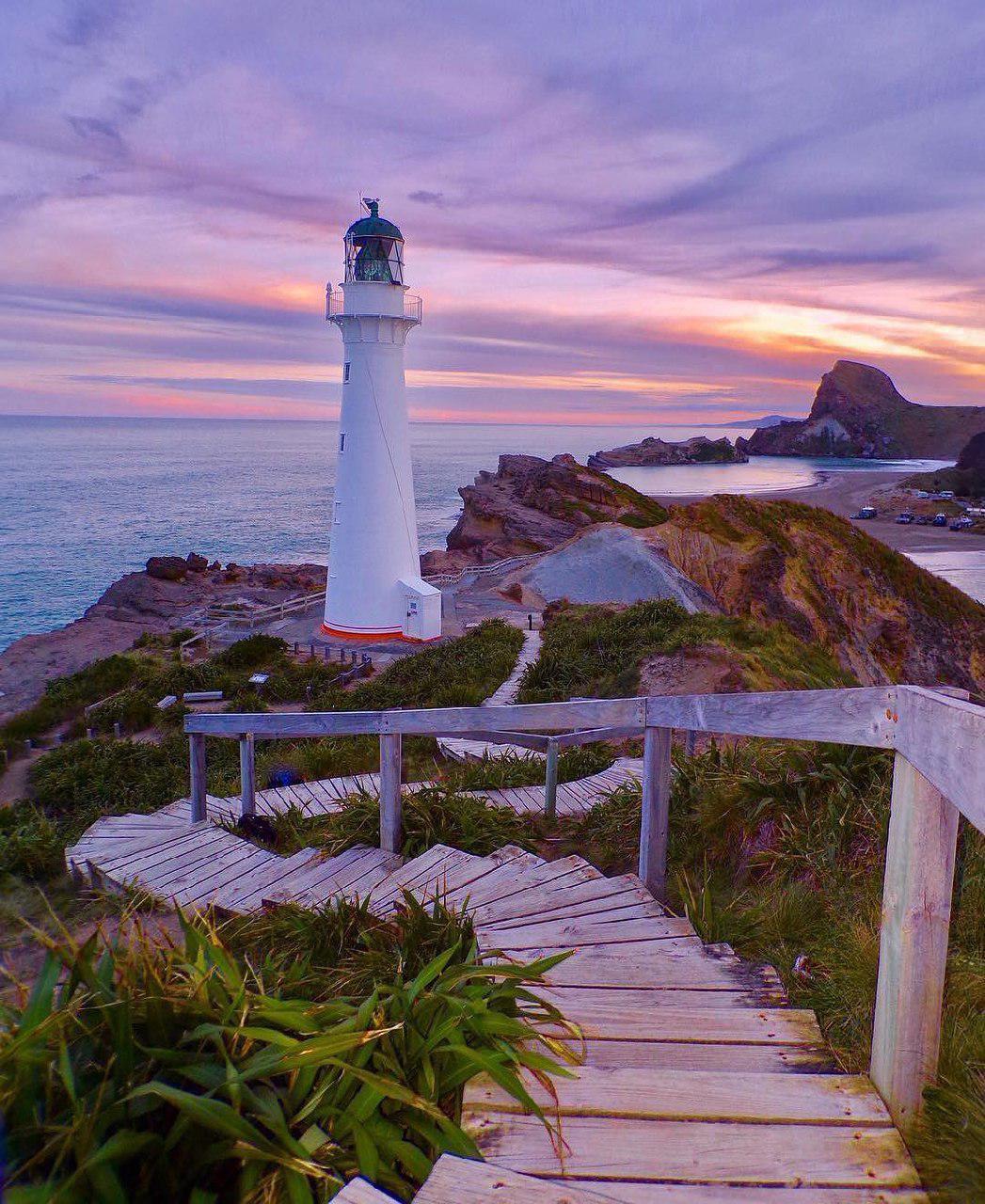 wairarapa castlepoint lighthouse