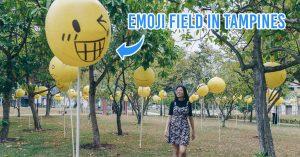 emoji field in tampines