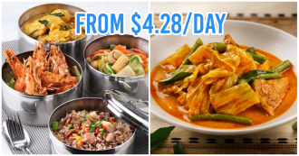 tingkat delivery service home daily food delivery singapore