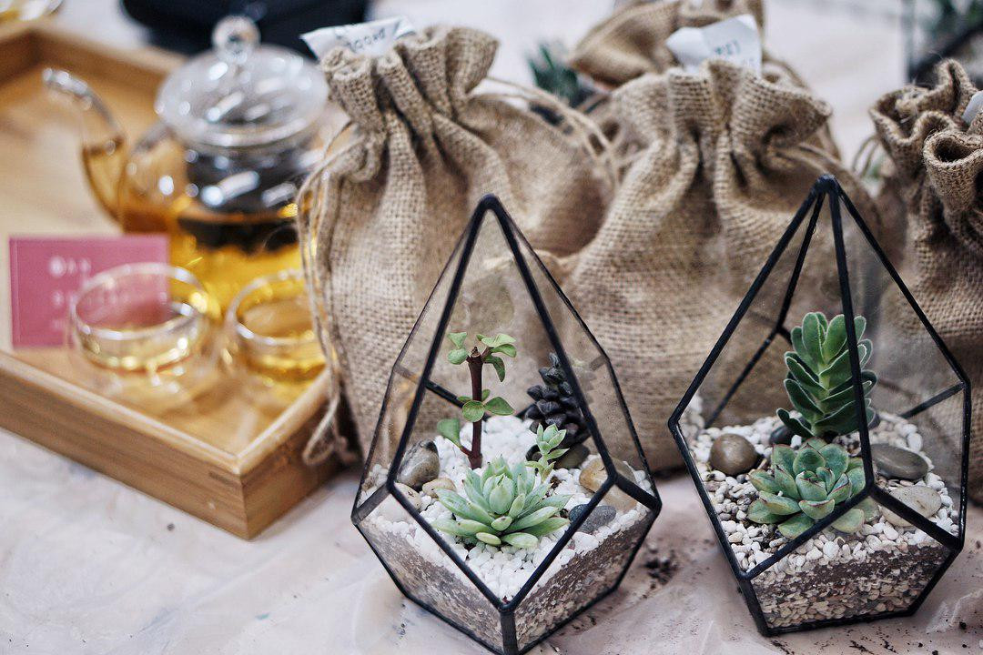 Crafts For Green terrariums