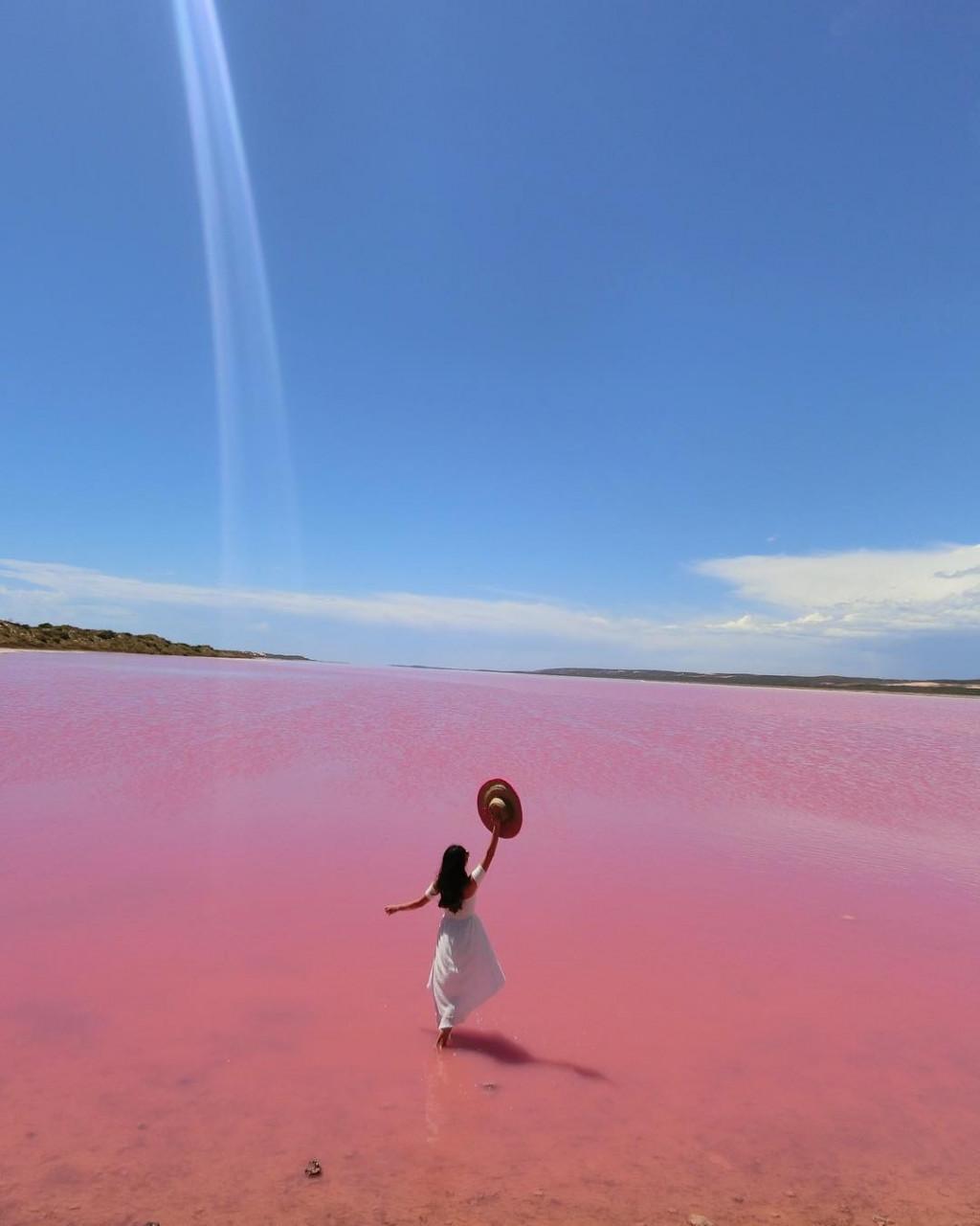 Pink lake - Hutt Lagoon