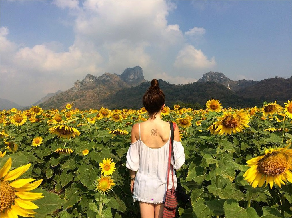 Scenic places in Khao Kho - Muak Lek Sunflower Fields