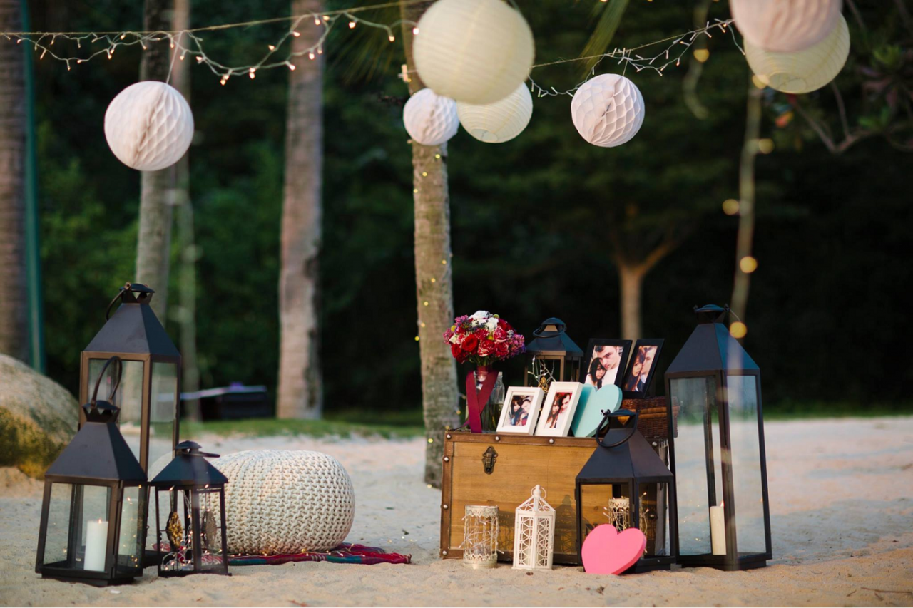 themed proposal setup idea planning service engagement help you marry picnic